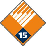 15 Year Service Pin