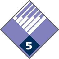 5 Year Service Pin